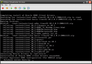 Oracle client automatically detected and installed on vCenter boot.